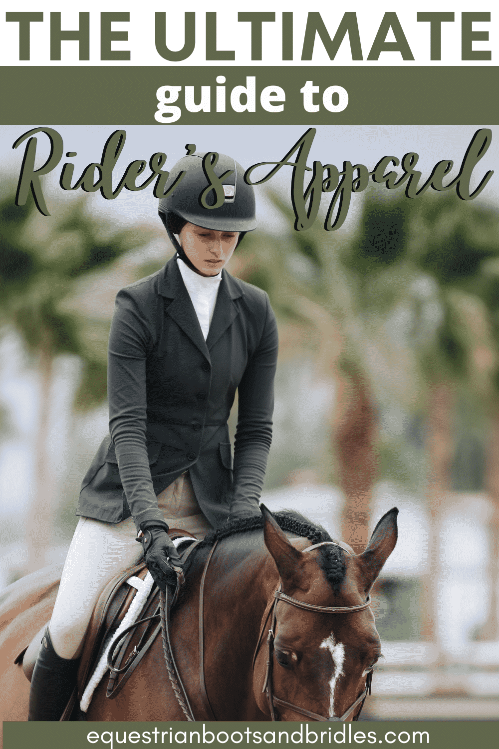 Rider's Gear and Apparel