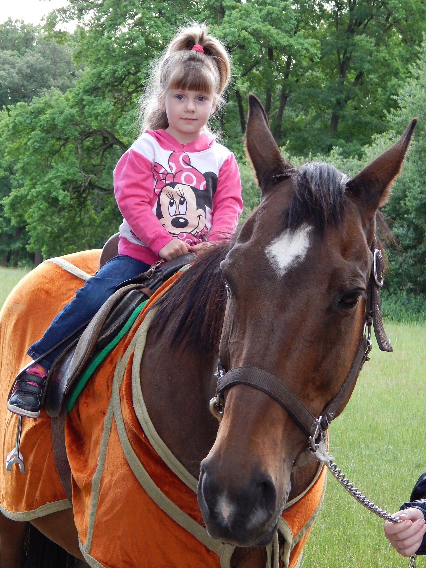 Should I buy my daughter a horse? girls love riding horses