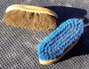 Hard brushes to groom a horse