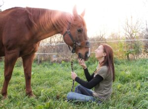 horses are the best stress relief
