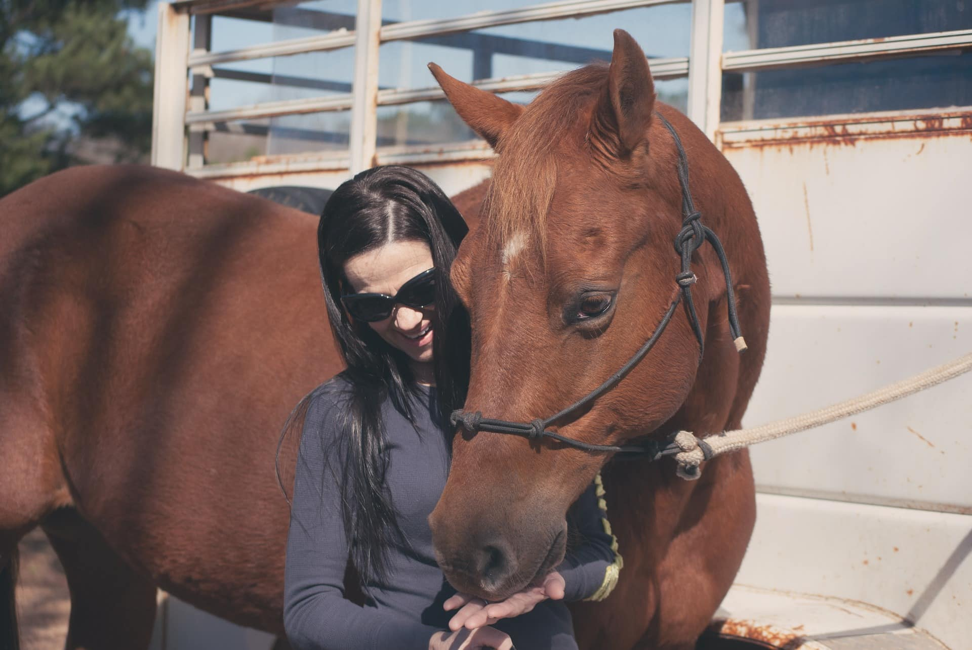 Horse care tips and tricks for a better and longer relationship with your horse