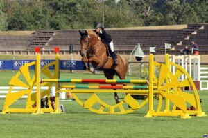 Show jumping riders gear and apparel