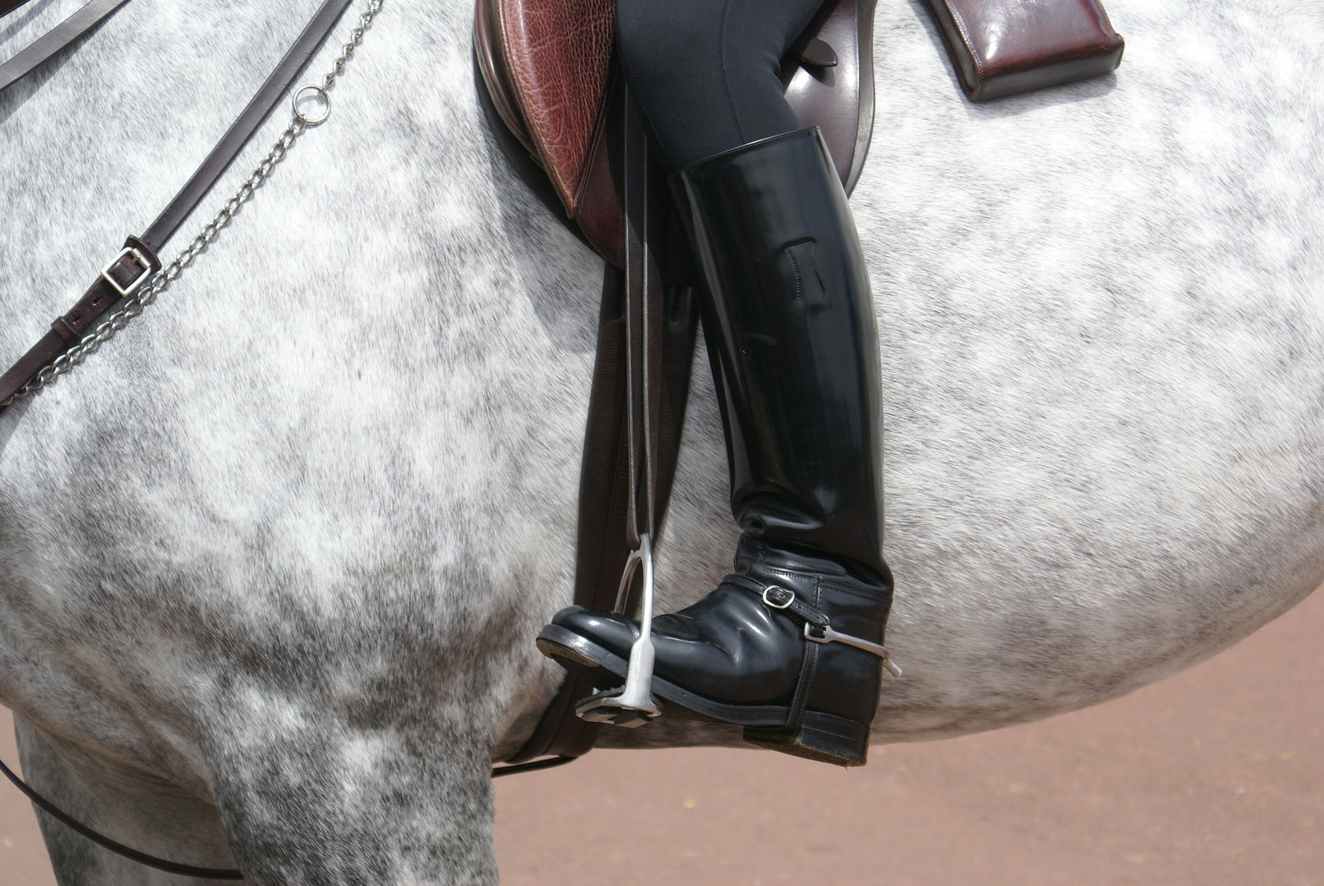 dressage boots need to be clean and shiny
