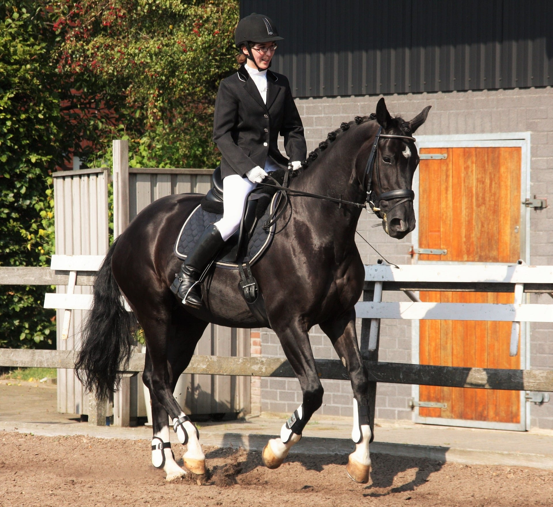 dressage wear is formal and conservative