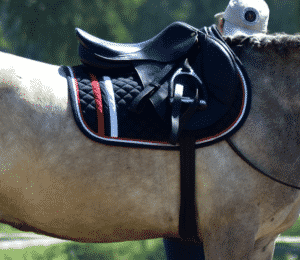 Step by step guide on cleaning synthetic horse saddles