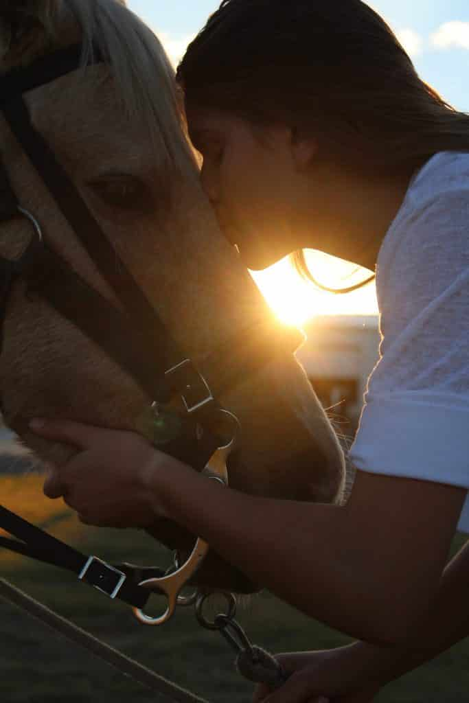 How To Buy Horse Tack For The First Time & What To Avoid