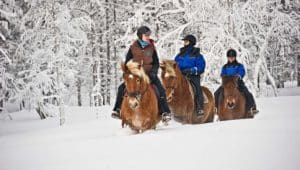 What to Wear Horseback Riding in the Winter