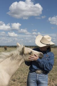 Be Affectionate with your Horse