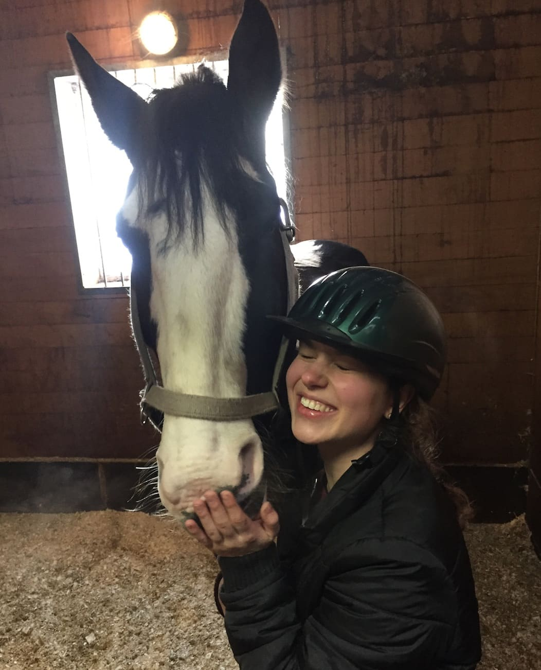 bonding is key to maintaining your relationship with your horse