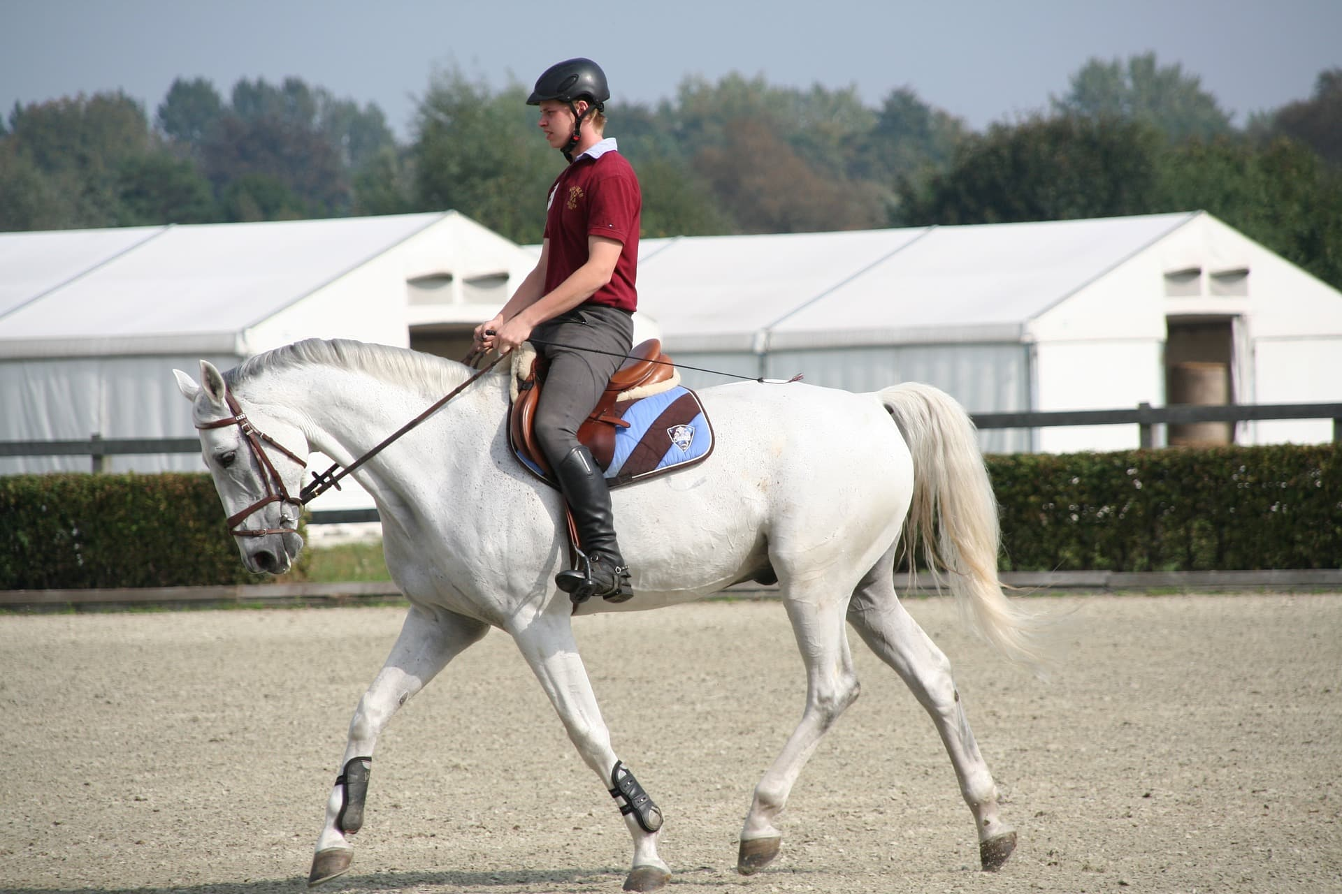 you want to buy the horse tack that you need for what you will be doing