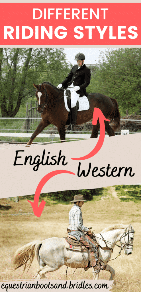 Difference Between Western and English Riding