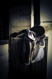 How to Measure for A Bridle
