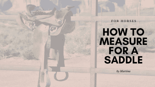 How to Measure for a Saddle