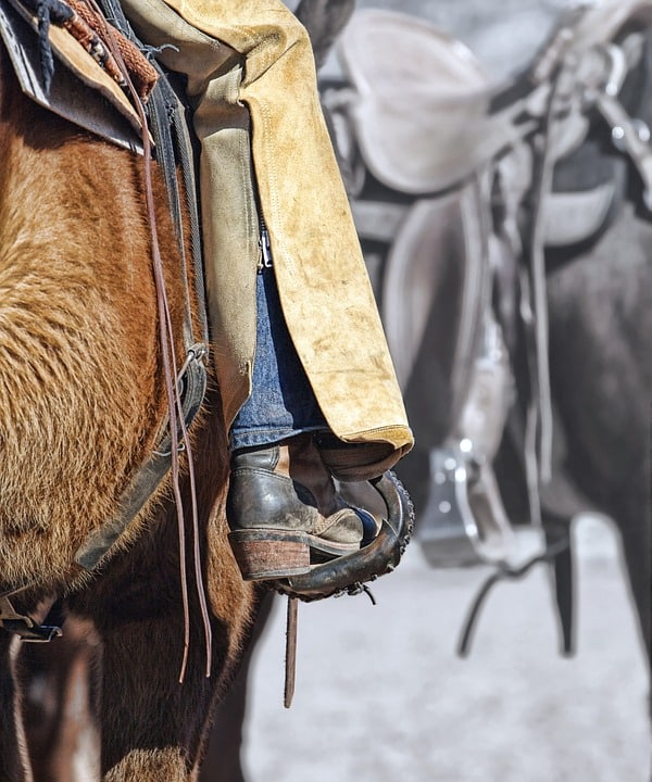 Before You Ride: Horse Tacking Tips 4