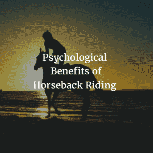 Psychological Benefits of Horseback Riding