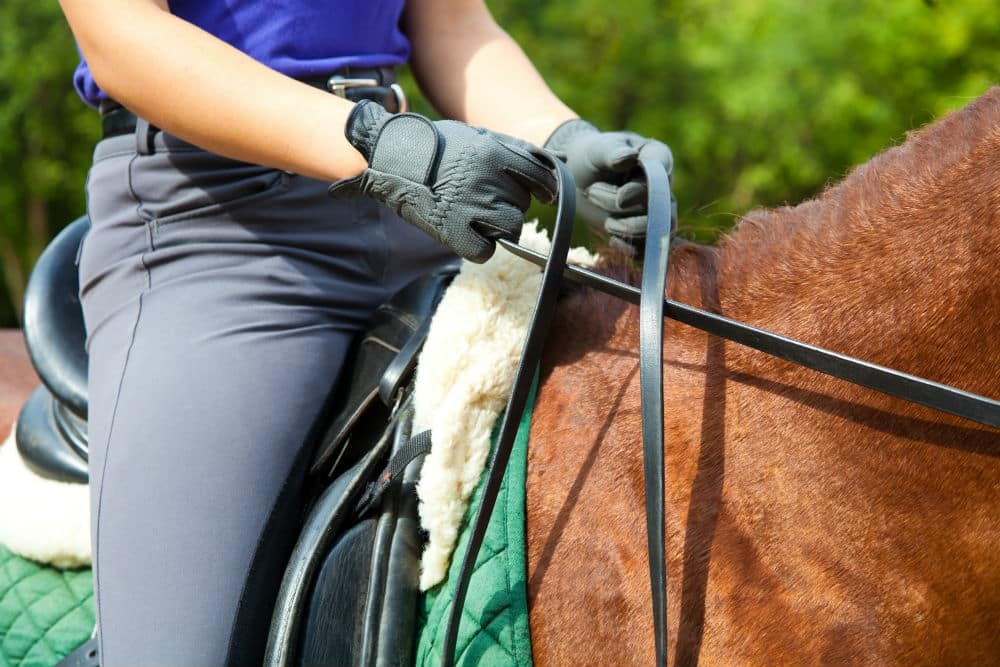 Best Horse Riding Gloves: What is the Best Value for Your Money?