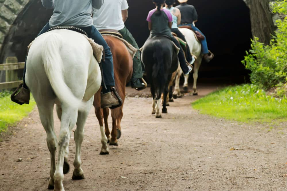 How Far Can You Travel by Horseback