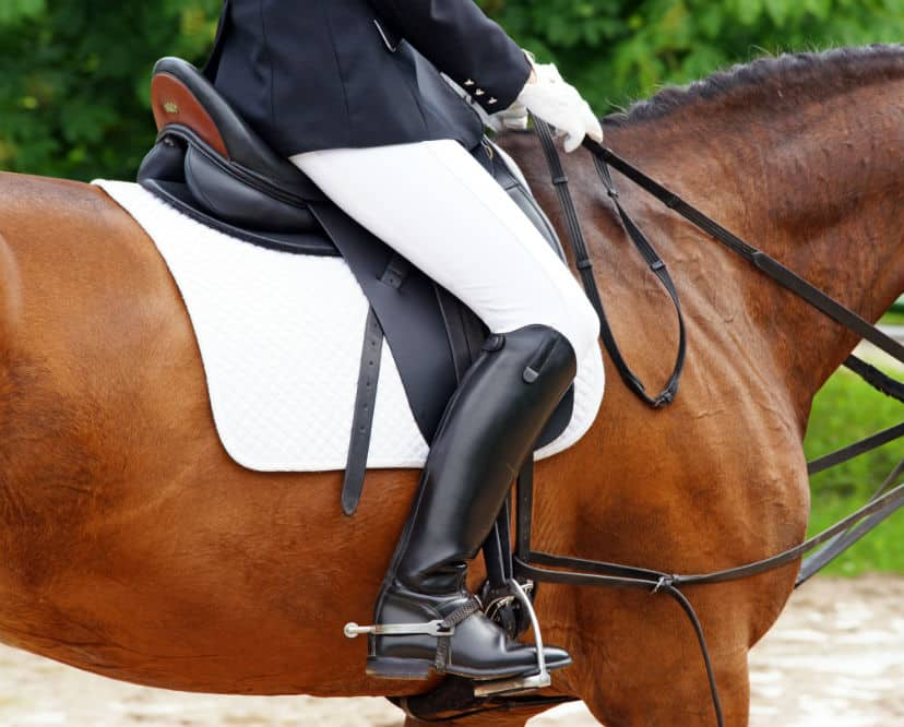 best women's horse riding boots - english dressage boots