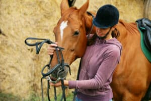 Facts About Horse Riding and A Review