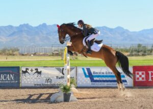 english-horseback-riding-learning-to-jump-on-a-horse