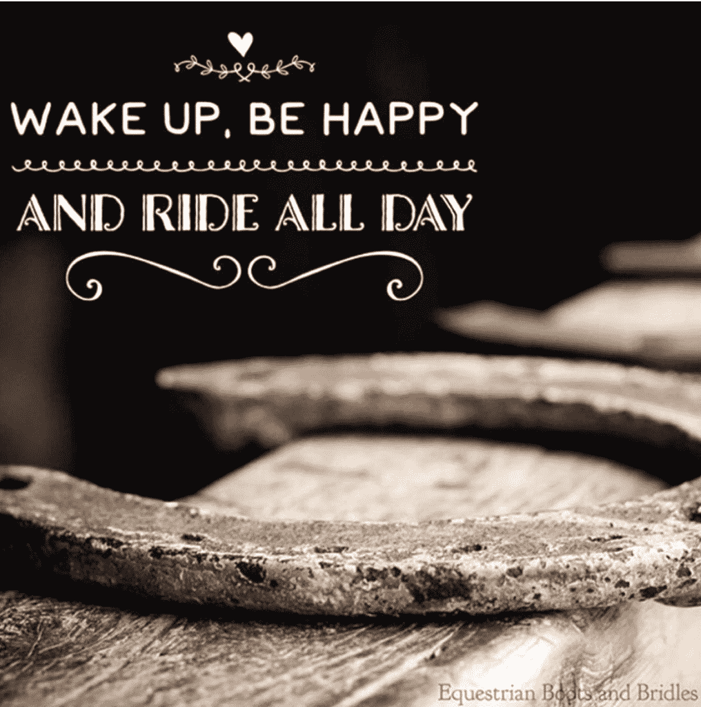 Wake up be happy and ride all day by equestrian boots and bridles