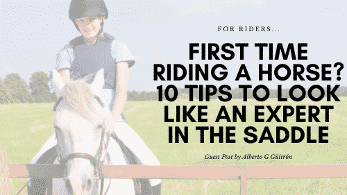 First Time Riding a Horse? 10 Tips to Look Like an Expert in the Saddle 1