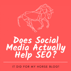 Does Social Media Help SEO? It did for my Horse Blog