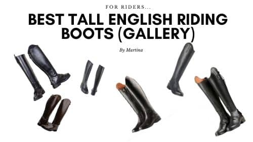 best tall english riding boots