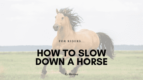 How to Slow Down a Horse