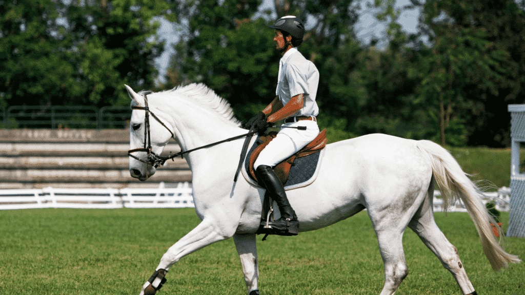 understanding bit pressure and How To Slow Down A Horse