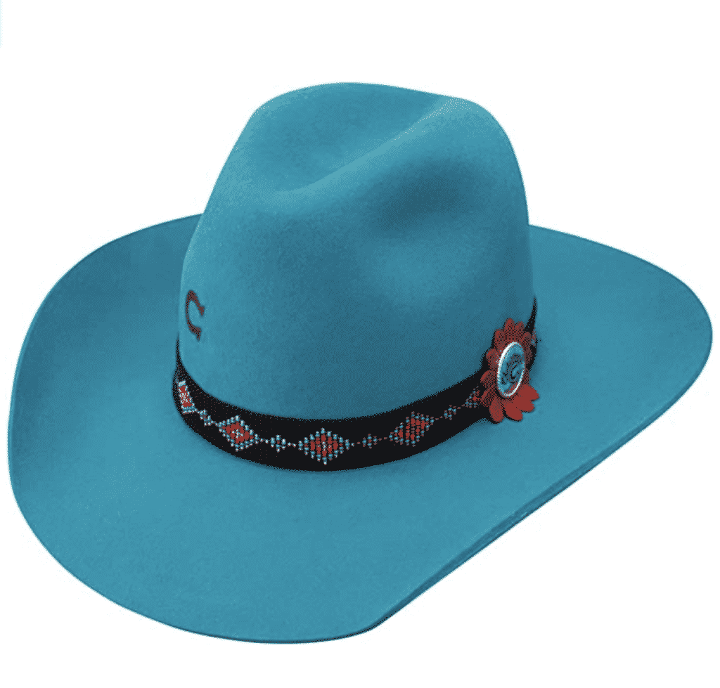 Charlie 1 Horse Wild Tribe Cowboy Hat