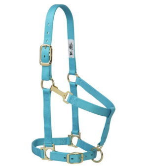 Weaver Leather Turquoise Halter