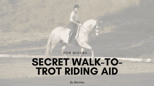 Walk to trot riding aid