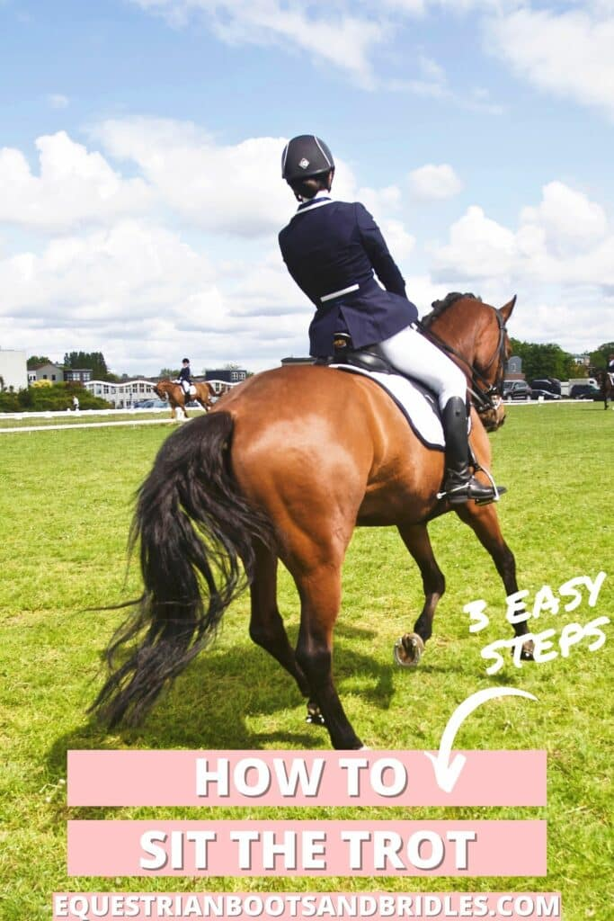 How to sit the trot. horse tips that will help you become a better rider