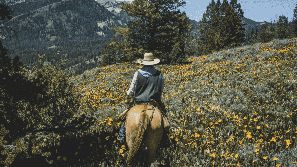 how far can you travel on horseback in a day trail riding