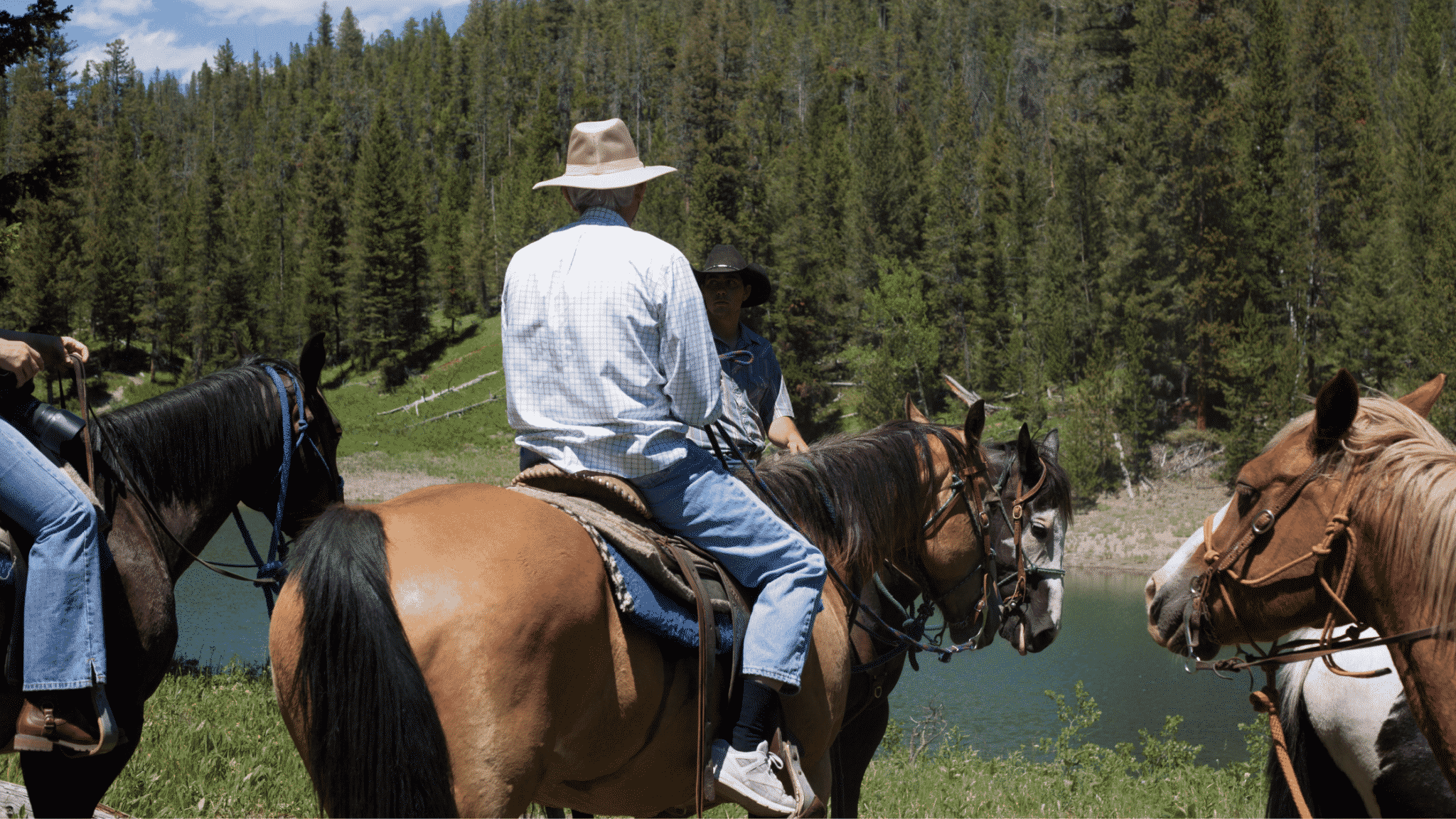 keep terrain in mind when trying to plan for long trail rides