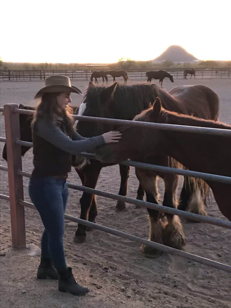Buying Your First Horse - The Basics of Horse Ownership for Beginners 5