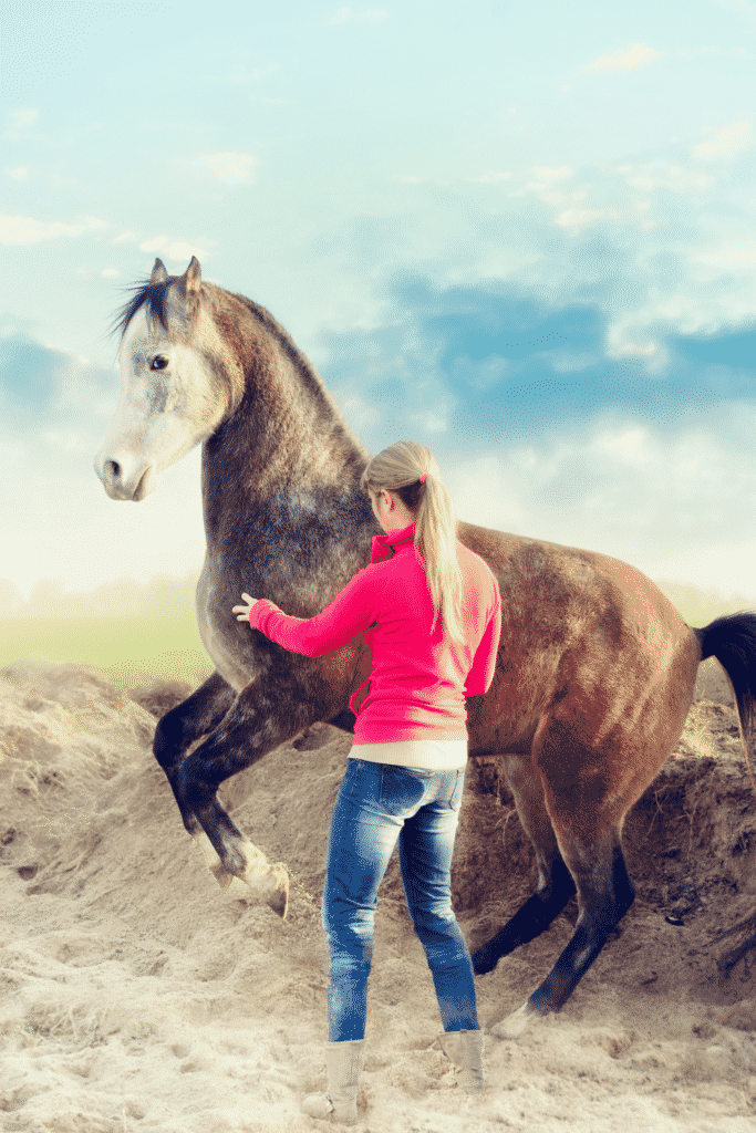 Horse Training Methods and Philosophies 3