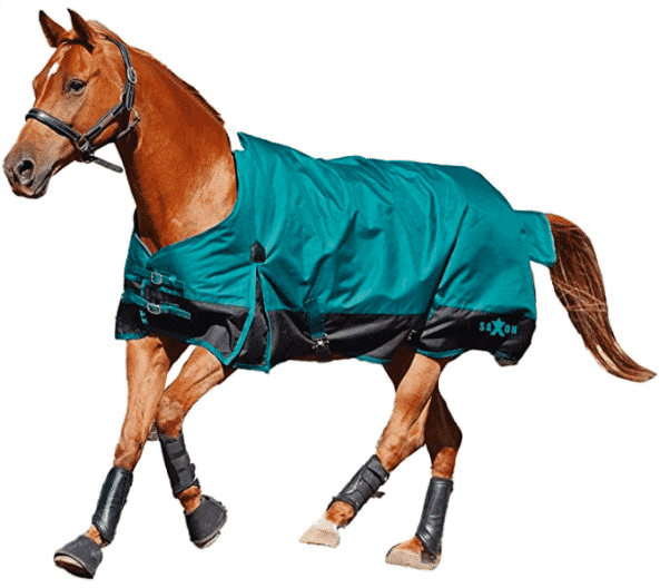 The Best Horse Blanket to Match Your Every Need 4