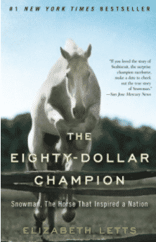 Best Horse Books Ever, the Rider's List 8