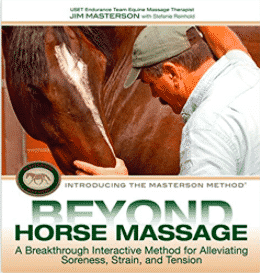 Best Horse Books Ever, the Rider's List 31