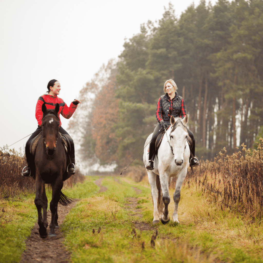 Why Horseback Riding is Therapeutic 6