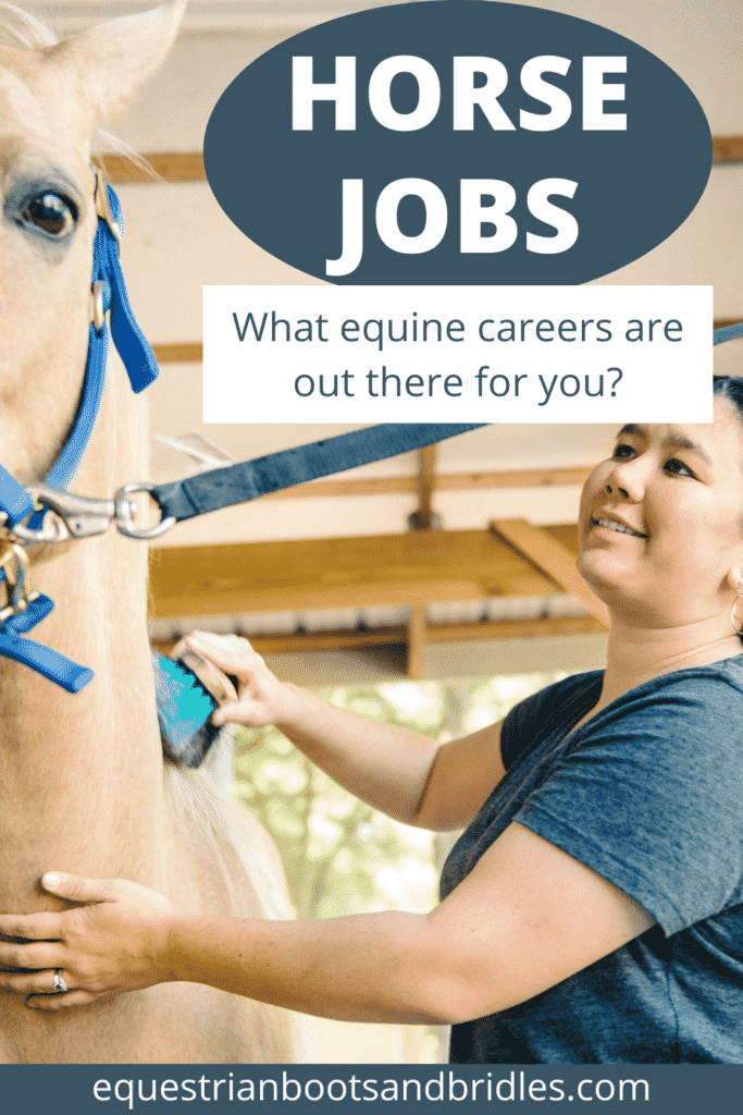 Horse Jobs: What Equine Careers Are Out There For You? 11