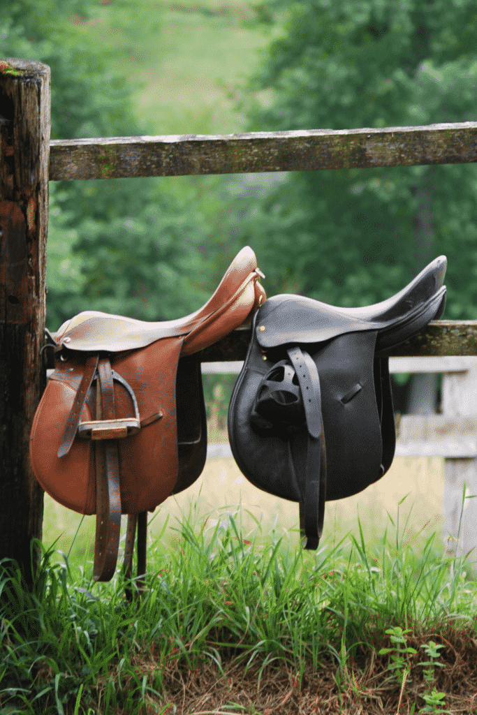 What is Horse Tack: Saddles