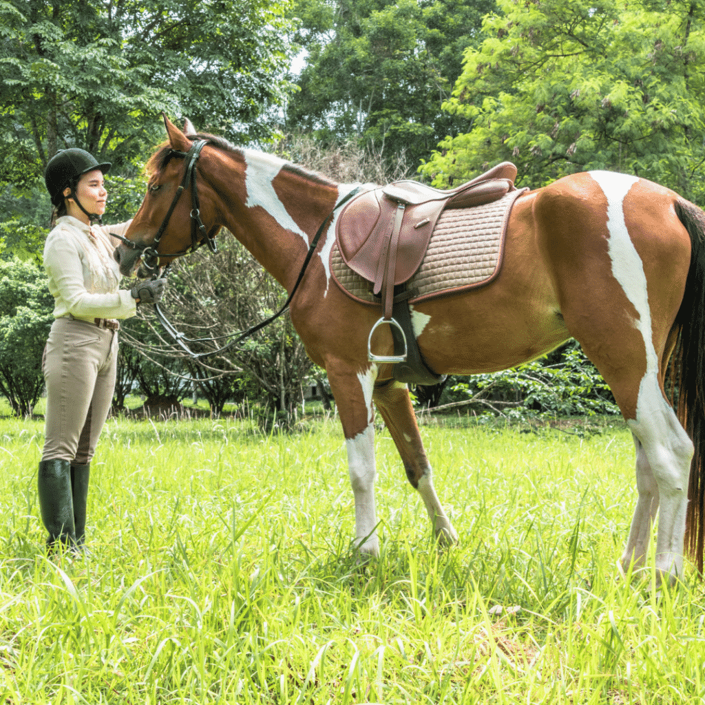 Used Horseback Riding Apparel Online - Where to Find It 2
