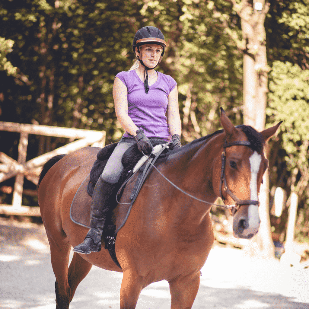 Buying Your First Horse - The Basics of Horse Ownership for Beginners 13