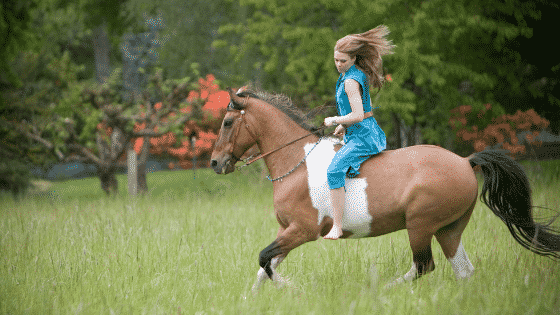 riding bareback is easy when you're young