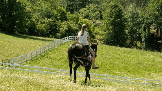 learn how to ride without stirrups