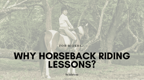 Why Horseback Riding Lessons?