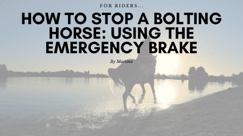 Stop a Bolting Horse